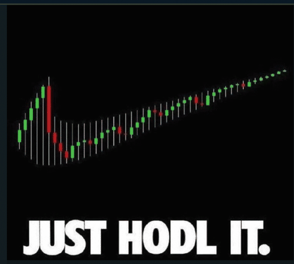 bitcoin-crypto-nike-just-hodl-it-meme