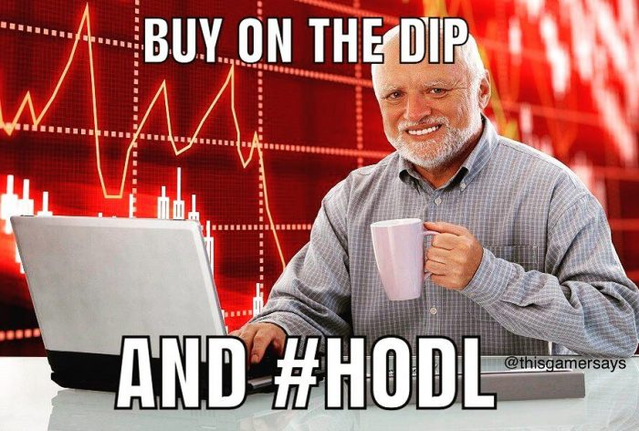 harold-buy-on-dip-hodl-meme